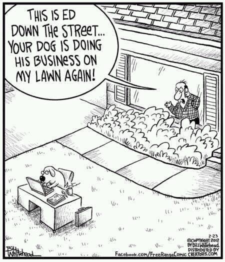 Dog-doing-business.jpg