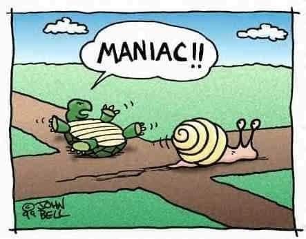 Snail.jpg.39fd8a2124638dc81f542f1c63eadc27.jpg